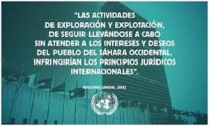 """Sahara Occidental: """"Sus recursos naturales son explotados ilegalmente por Marruecos y empresas multinacionales"""""""